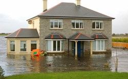 Should I buy flood insurance?