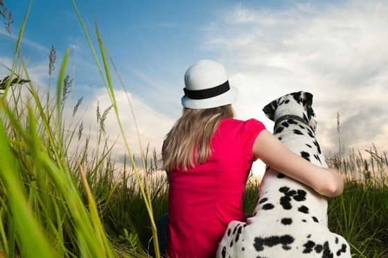Pet Health Insurance: What Every Pet Owner Should Consider