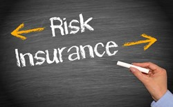 A Look at Uninsurable Risk
