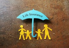 Top Life Insurance Feeds to Follow on Twitter