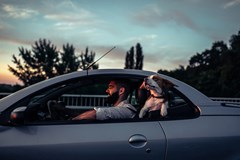 Man and dog enjoying a car ride with the windows down