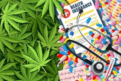 What Marijuana Use Means for Your Life Insurance