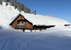 snow damage home insurance: A snow covered home